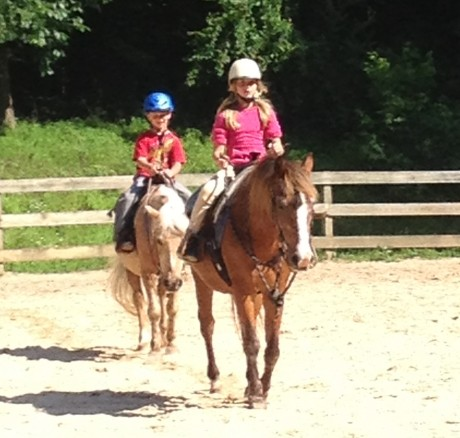 Services at Willow Oak Farm Riding School